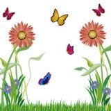 χορτάρι πεταλούδων flowerses ελεύθερη απεικόνιση δικαιώματος