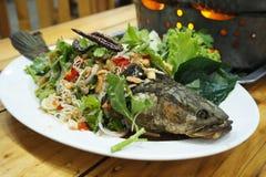 χορτάρι ψαριών για την υγεία Στοκ Φωτογραφία