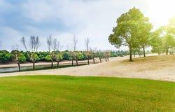 Χορτοτάπητας γηπέδων του γκολφ Στοκ εικόνα με δικαίωμα ελεύθερης χρήσης