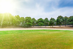 Χορτοτάπητας γηπέδων του γκολφ Στοκ φωτογραφία με δικαίωμα ελεύθερης χρήσης