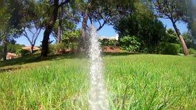 Χορτοτάπητας ποτίσματος ψεκαστήρων άρδευσης κήπων - πυροβοληθε'ν 1 απόθεμα βίντεο