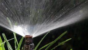 Χορτοτάπητας ποτίσματος Bubler άρδευσης κήπων - πυροβοληθε'ν POV 03 απόθεμα βίντεο