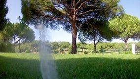 Χορτοτάπητας POV ποτίσματος ψεκαστήρων άρδευσης κήπων απόθεμα βίντεο