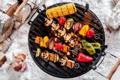 Χορτοφάγα kebabs που ψήνουν στη σχάρα χειμερινό BBQ στοκ εικόνες