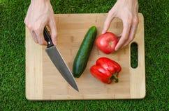 Χορτοφάγοι και μαγείρεμα στη φύση του θέματος: το ανθρώπινο αγγούρι εκμετάλλευσης χεριών, η ντομάτα και το κόκκινο πιπέρι σε μια  στοκ φωτογραφία με δικαίωμα ελεύθερης χρήσης
