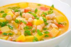 Χορτοφάγος άσπρη σούπα φασολιών Στοκ Εικόνες
