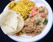 Χορτοφάγος νότιου ινδικός γεύματος Στοκ φωτογραφίες με δικαίωμα ελεύθερης χρήσης