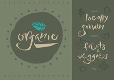 Χορτοφάγος - οργανικός - καλλιγραφία Στοκ φωτογραφία με δικαίωμα ελεύθερης χρήσης