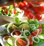χορτοφάγος ορεκτικών Στοκ Εικόνες