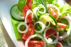 χορτοφάγος σαλάτας Στοκ εικόνες με δικαίωμα ελεύθερης χρήσης
