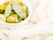 χορτοφάγος σούπας κύπελ στοκ εικόνες με δικαίωμα ελεύθερης χρήσης