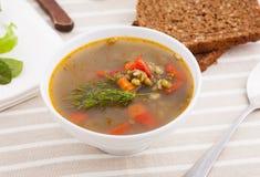 Χορτοφάγος σούπα Στοκ Εικόνες