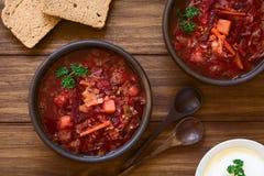 Χορτοφάγος σούπα Borscht Στοκ φωτογραφία με δικαίωμα ελεύθερης χρήσης
