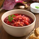Χορτοφάγος σούπα Borscht Στοκ εικόνα με δικαίωμα ελεύθερης χρήσης