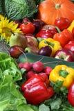 Χορτοφάγος σωρός στοκ φωτογραφία με δικαίωμα ελεύθερης χρήσης