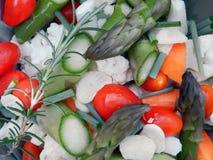 χορτοφάγος Στοκ Εικόνες