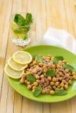 Χορτοφάγος chickpeas σαλάτα με τη μέντα και τα καρυκεύματα Στοκ Εικόνες