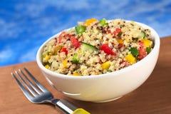 Χορτοφάγος Quinoa σαλάτα Στοκ εικόνα με δικαίωμα ελεύθερης χρήσης