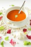 Χορτοφάγο γεύμα - σούπα ντοματών στοκ φωτογραφίες
