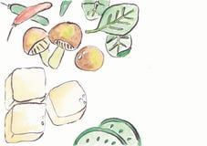 Χορτοφάγο προμαγείρεμα ελεύθερη απεικόνιση δικαιώματος