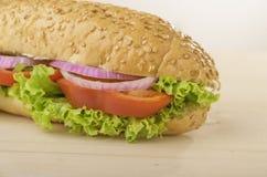 Χορτοφάγο σάντουιτς Στοκ φωτογραφία με δικαίωμα ελεύθερης χρήσης