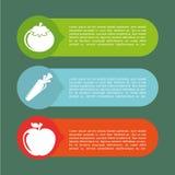 Χορτοφάγο infographics Στοκ Εικόνα