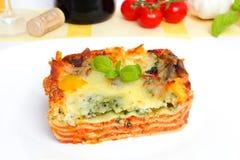 Χορτοφάγο lasagna Στοκ εικόνες με δικαίωμα ελεύθερης χρήσης