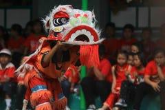 Χορός λιονταριών πραγμάτων στον κινεζικό νέο εορτασμό έτους Στοκ Εικόνα