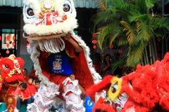 Χορός λιονταριών πραγμάτων στον κινεζικό νέο εορτασμό έτους Στοκ φωτογραφίες με δικαίωμα ελεύθερης χρήσης