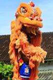 Χορός λιονταριών πραγμάτων στον κινεζικό νέο εορτασμό έτους Στοκ Φωτογραφίες