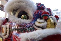 Χορός λιονταριών σε Chinatown, Βοστώνη κατά τη διάρκεια του κινεζικού νέου εορτασμού έτους Στοκ Φωτογραφία