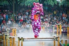 Χορός λιονταριών Στοκ εικόνα με δικαίωμα ελεύθερης χρήσης