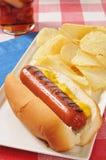Χοτ-ντογκ με τη μουστάρδα και τα τσιπ Στοκ εικόνα με δικαίωμα ελεύθερης χρήσης