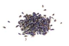 Χούφτα lavender των λουλουδιών που απομονώνονται στο άσπρο υπόβαθρο στοκ εικόνα με δικαίωμα ελεύθερης χρήσης