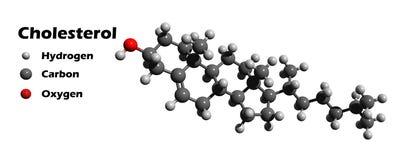 χοληστερόλη διανυσματική απεικόνιση