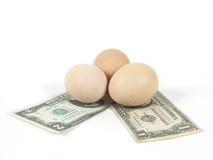 χρήματα αυγών Στοκ εικόνα με δικαίωμα ελεύθερης χρήσης
