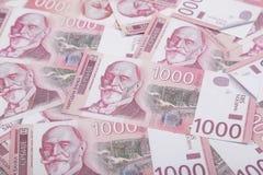 Χρήματα και έννοια πόρων χρηματοδότησης Χίλια σερβικά τραπεζογραμμάτια εθνικού νομίσματος λογαριασμών Δηναρίων στοκ φωτογραφία με δικαίωμα ελεύθερης χρήσης