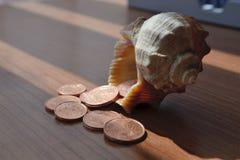 Χρήματα και κοχύλι Στοκ εικόνες με δικαίωμα ελεύθερης χρήσης