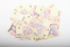 Χρήματα - κορώνες Στοκ εικόνα με δικαίωμα ελεύθερης χρήσης