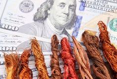 Χρήματα λογαριασμών δολαρίων με το απόρριμα χαλκού Στοκ εικόνες με δικαίωμα ελεύθερης χρήσης