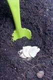 Χρήματα που θάβονται στο έδαφος Το κοίλωμα ανασκάπτεται, τα νομίσματα είναι σε το Ένα φτυάρι προεξέχει από το έδαφος Στοκ Φωτογραφίες