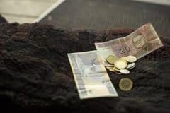 Χρήματα σε ένα κατώφλι Στοκ φωτογραφία με δικαίωμα ελεύθερης χρήσης