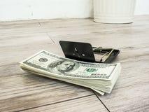 Χρήματα σε μια ποντικοπαγήδα Στοκ Φωτογραφία
