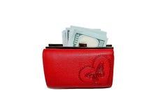 Χρήματα στο πορτοφόλι Στοκ εικόνες με δικαίωμα ελεύθερης χρήσης