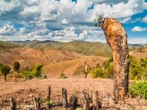 Χρήση γης στοκ εικόνες με δικαίωμα ελεύθερης χρήσης