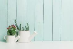 χρήση φυτών φύλλων σπιτιών λεπτομέρειας ανασκόπησης Στοκ φωτογραφία με δικαίωμα ελεύθερης χρήσης