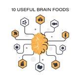 Χρήσιμα προϊόντα για το μυαλό ελεύθερη απεικόνιση δικαιώματος