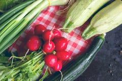 χρήσιμες βιταμίνες λαχανικών ντοματών άνοιξη σαλάτας αγγουριών Στοκ φωτογραφία με δικαίωμα ελεύθερης χρήσης