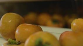 Χρησιμοποίηση μιας μηχανής για να καθαρίσει persimmons φιλμ μικρού μήκους