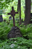 Χριστιανικός σταυρός στα άγρια αλσύλλια της πράσινης βλάστησης στο παλαιό νεκροταφείο στοκ εικόνες